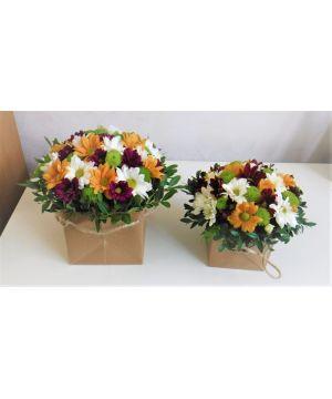 Krabička chryzantéma